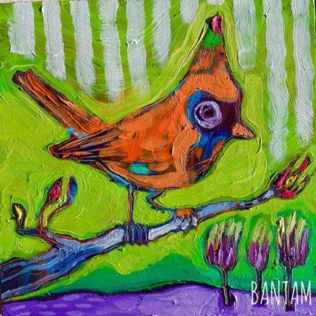 the dignified orange cardinal